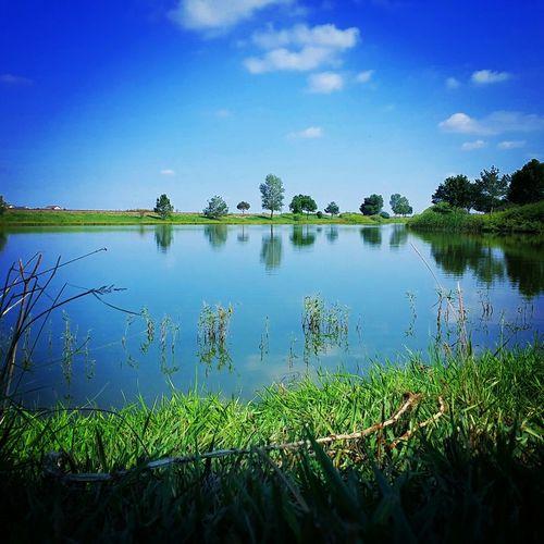 Summer,lake,trees,green,blue,colorado
