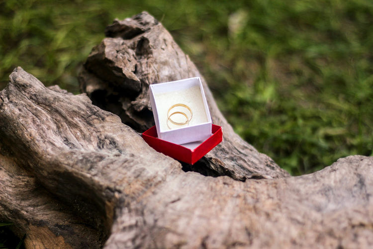 High angle view of wedding rings in box on wood