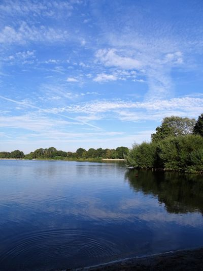 Salzgittersee, zwischen Braunschweig und Hildesheim Beauty In Nature Blue Cloud - Sky Day Germany Lake Landscape Nature No People Outdoors Salzgitter Salzgittersee Scenics Sky Tranquil Scene Tranquility Tree Water