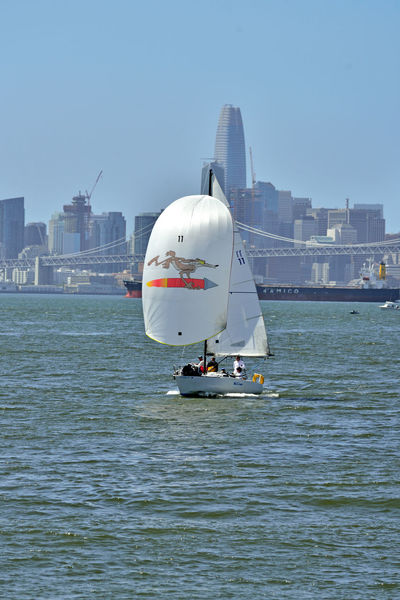Sailing Middle Harbor 14 Port Of Oakland,Ca. Middle Harbor Waterfront♥ Sailboats Sailing San Francisco Bay Bay Bridge Cityscape San Francisco Skyline Skyscrapers Freighter Urban Skyline Landscape_Collection Landscape Landscape_photography Open Sails A Day On The Bay Calm Water Sailing Boat Mast Nautical Vessel Wake - Water Financial District  Ship