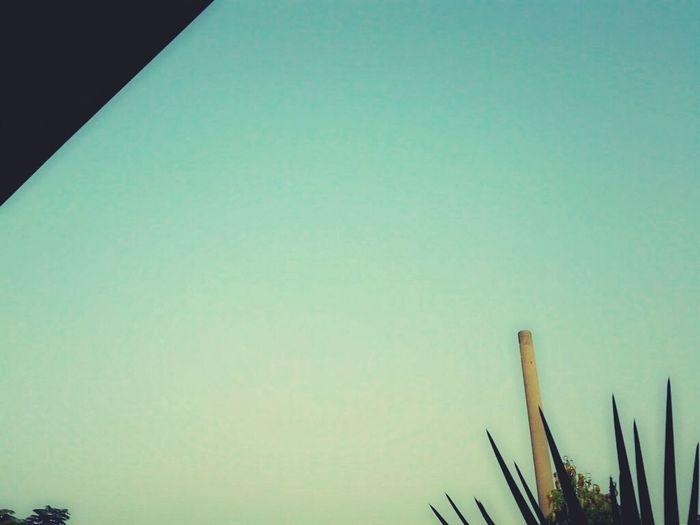 my blue sky Enjoying Life