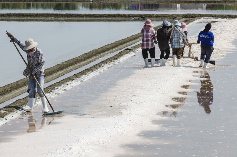 Farmers are using the tools to scoop the salt into a pile in salt garden at phetchaburi, thailand.