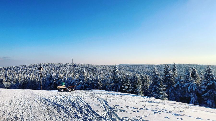 Winterwonderland | Oliver Hlavaty Photographie • © 2015-18 Oliverhlavatyphotographie Oliverhlavaty Deutschland Germany Winterwonderland Rennsteig Thüringer Wald Thuringia Thuringen Oberhof Snow Winter Cold Temperature Nature Copy Space Blue White Color Beauty In Nature Clear Sky Mountain Tree Frozen No People Day Pine Tree Landscape Outdoors