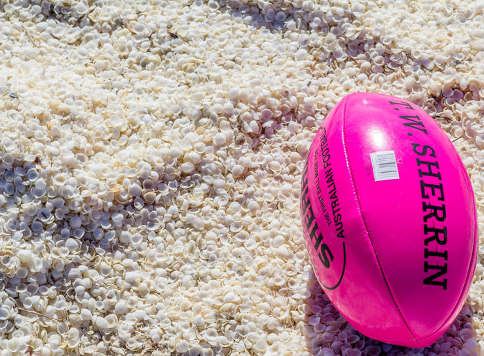 High angle view of pink ball on beach