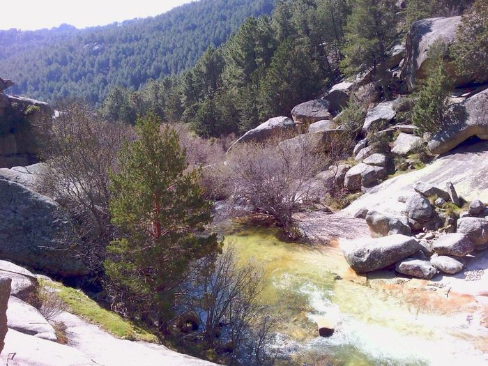 Canto Cochino Sierra De Madrid La Pedriza Landscape