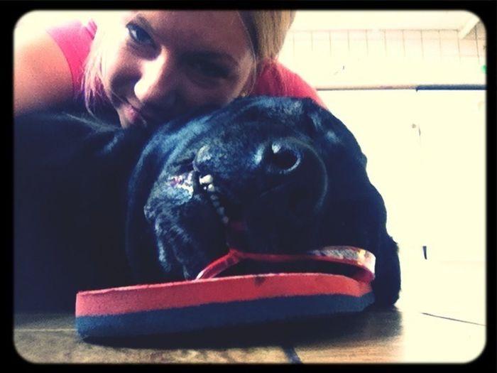 I Love My Dog Flip Flops Dog Smile