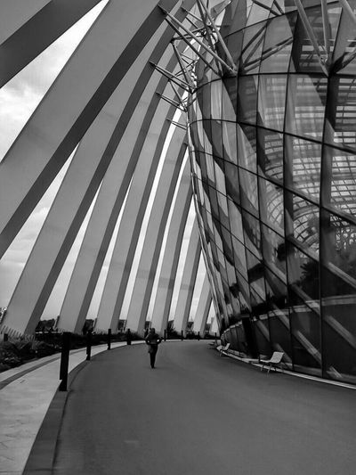 Architecture Architecture_collection Singapore Blackandwhite Blackandwhite Photography Black And White Photography Landscape_photography Hanging Out Showcase July