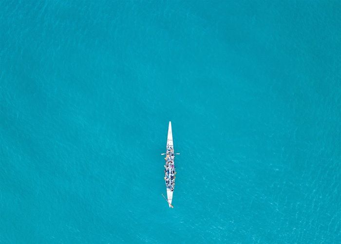 Directly above view of people sculling in river