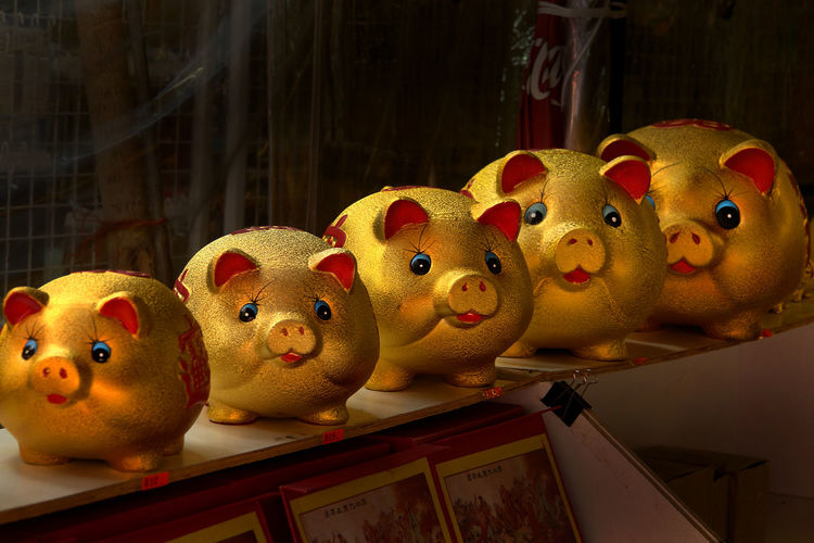 Animal Representation Childhood Close-up Day For Sale Gold Colored Indoors  No People Piggy Coin Box Retail  Still Life Store