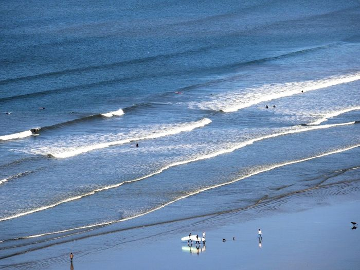 Beach Nature Sand Outdoors Water Surf Surfing Surf's Up Dog Run On The Beach Reflection Reflections And Shadows