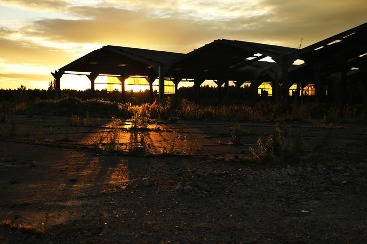 Abandoned mushroom farm at sunset. Golden Hour Sunlight Sunset Ruins Mushroom Farm Abandoned Places Derelict Building Overgrown Return To Nature Architecture Nature Sky Day Built Structure No People Outdoors Cloud - Sky Ruined Building Sillouette Sommergefühle