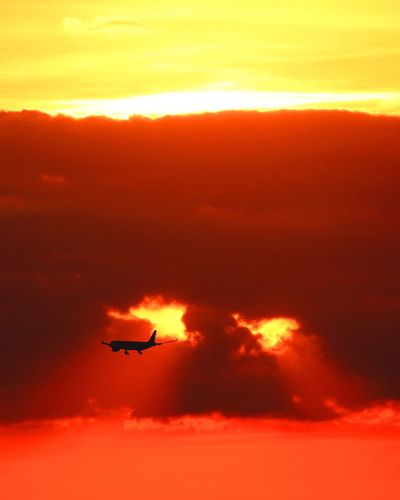 Sunset Flying Orange Color Sky Transportation Air Vehicle Airplane Mode Of Transport Cloud - Sky Silhouette Mid-air Sun No People Nature Scenics Outdoors Beauty In Nature Airshow Fighter Plane Day London
