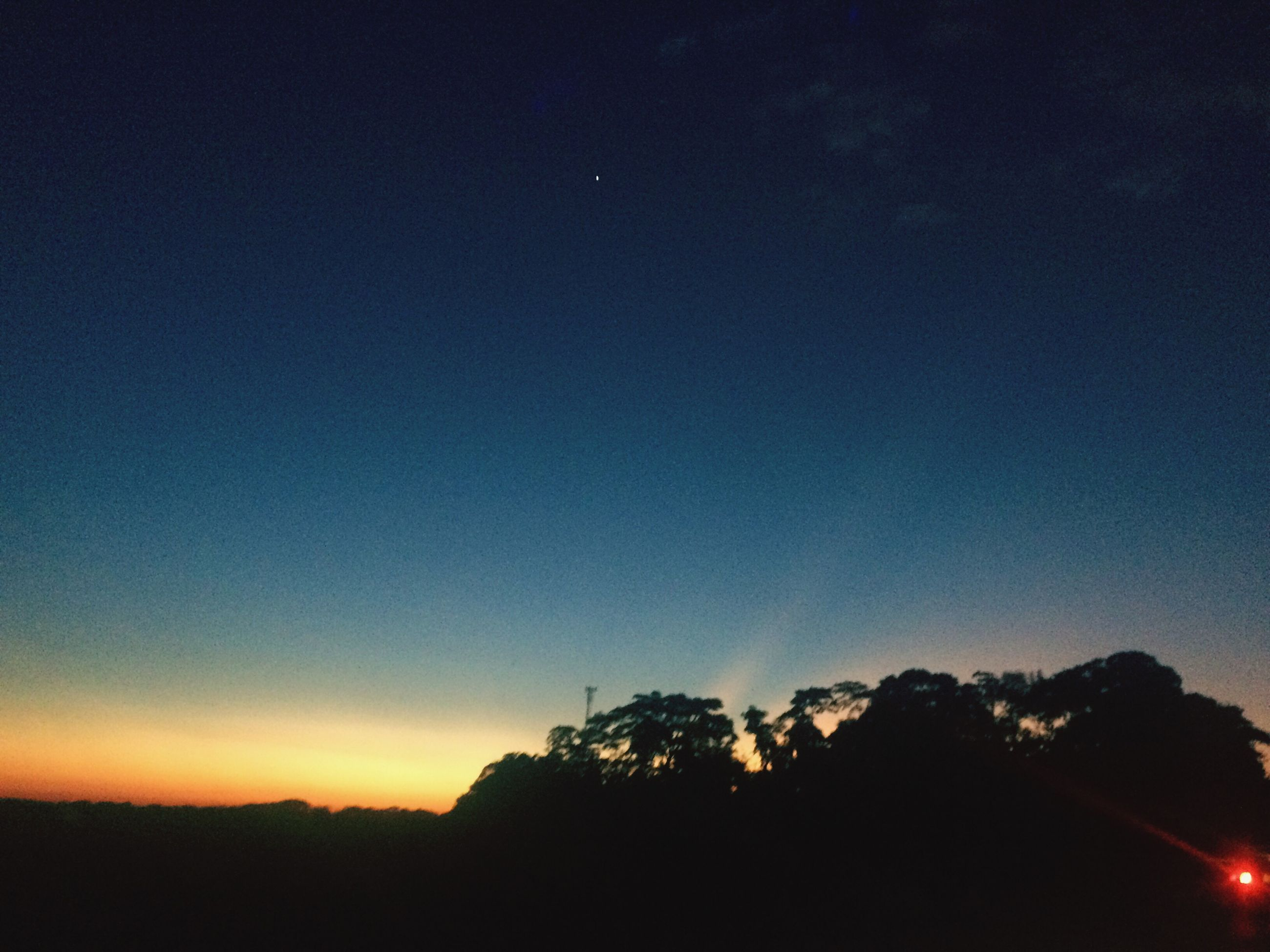 silhouette, nature, tree, sky, night, no people, beauty in nature, tranquility, scenics, blue, tranquil scene, outdoors, clear sky, low angle view, sunset