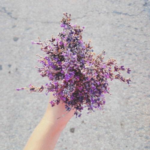 Close-up of lavender bouquet