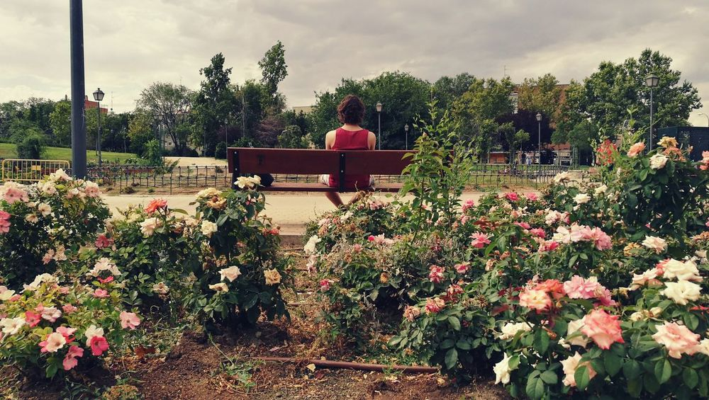 Taking Photos Check This Out Relaxing Enjoying Life 43 Golden Moments Time Passes By Chill Out Loneliness Park Relaxing Time Model Photography Friends Time Flowers Storm Clouds Madrid Spain_greatshots SPAIN Young Model Youth Contrast Colors