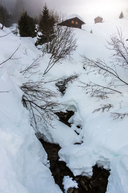 Snow and little creek in the mountains BACH Berghütte Creek Gebirgsbach Schnee Skiing Skiing In Austria 👌 Tree Wintersport Wintersportgebiet Bachelor Baum Berg Gebirge Glen Mountains Ski Ski Fahren Skigebiet Skihütte Snow Wintersportarea Wintersportregion Wintersports