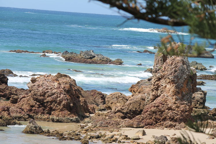 Australia Great View Look At This Blue Sky And Sea Love The Sea And The Beach Low Tide Welcomes Rocks Seashells And What The Tide Has Washed Up On The Shore Line Port Macquarie Sea And Trees