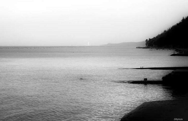 Paesaggio Mare Trieste TriesteSocial Blackandwhite Lamiacitta EyeEm Trieste Biancoenero Black & White Autumn Land Monochrome Landscape Landscape_photography