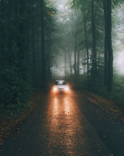 The Great Outdoors - 2016 EyeEm Awards Mist Fog Mood Nature Landscape Car Adventure Traveling Home For The Holidays
