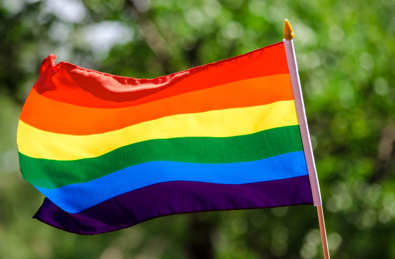 Gay rainbow flag waving in the wind Flag Focus On Foreground Multi Colored Day Pride Close-up Lgbt Gay Pride Gaypride Gay Parade   Rainbow Flag Gay Rights No People LGBT Rainbows Lgbt ❤️ Lgbtq
