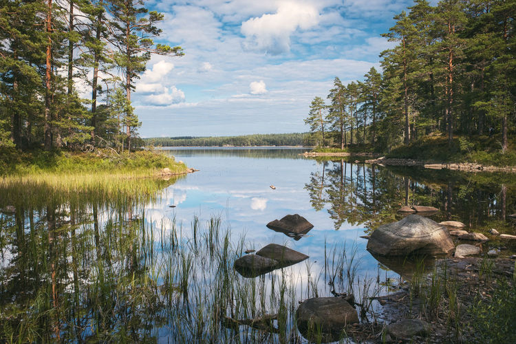 Mirror Reflection Sweden Beauty In Nature Cloud - Sky Day Growth Idyllic Lake Nature No People Non-urban Scene Outdoors Plant Reflection Remote Scenics - Nature Sky Tivedens National Park Tranquil Scene Tranquility Tree Water