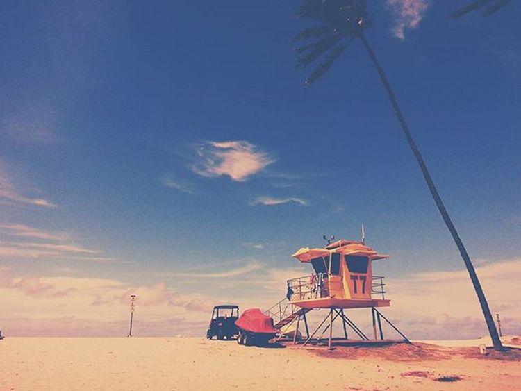 Zero Beach; Another Baldwin Shot. Maui Hawaii Baldwinbeach Beach Summer Mobilephotography Vscocam Vscophile Picoftheday Luckywelivehawaii 808  Palmtrees Lifeguard  Hawaiiphotographer Igaddict Blue Wave
