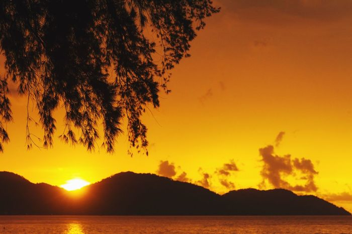 Sunset Sunset Beauty In Nature Scenics Nature Orange Color Silhouette Tranquility Mountain Sky Tranquil Scene Outdoors Tree Water Sea No People Penang Penang Malaysia Penang Beach