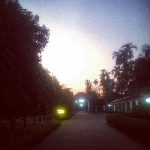Dawn Endofday Dark Sunset Goldenlight Blue Sky Home Vvacationdaysaregettingpassed