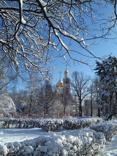 Собор Георгия Победоносца.The Cathedral Of St. George. Architecture Architecture_collection Church Freezing Odintsovo Russia Russia россия Temples Tree Tree And Sky Trees Architecture Photography Architecturephotography Bare Tree Church Architecture Day No People Outdoors Sky Temple Temple - Building Temple Architecture Templephotography Tree_collection  Trees And Sky