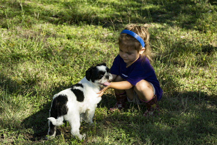 Cute boy playing with dog on grassy field
