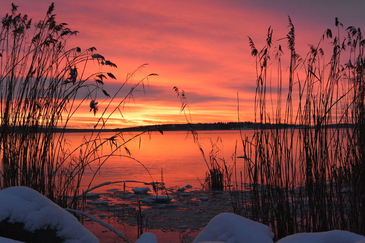 Västerås Sweden Sunrise Nature Mälaren Sverige Soluppgång Winter Winterwonderland Winter Morning Vinter Inverno