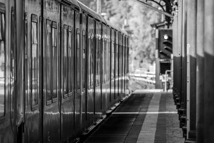 Train on railroad tracks amidst buildings