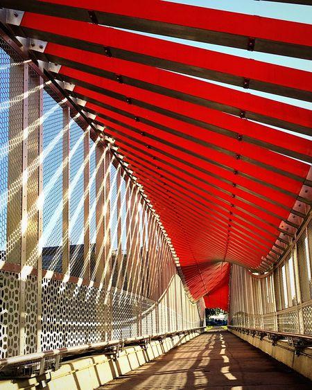 DNA Bridge, Gainesville, FL Architecture Built Structure Red Bridge Bridge - Man Made Structure Dna Gainesville Florida Florida Life Florida Architecture Leading Lines Neon Life