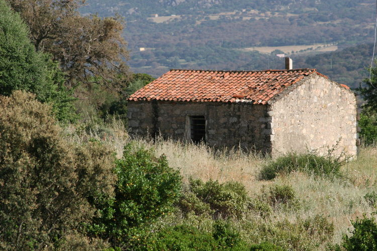 Ancient Ruins Architecture Built Structure Nature Sardinian Countryside Sardinian Tipical Stazzo Stazzo Stone House