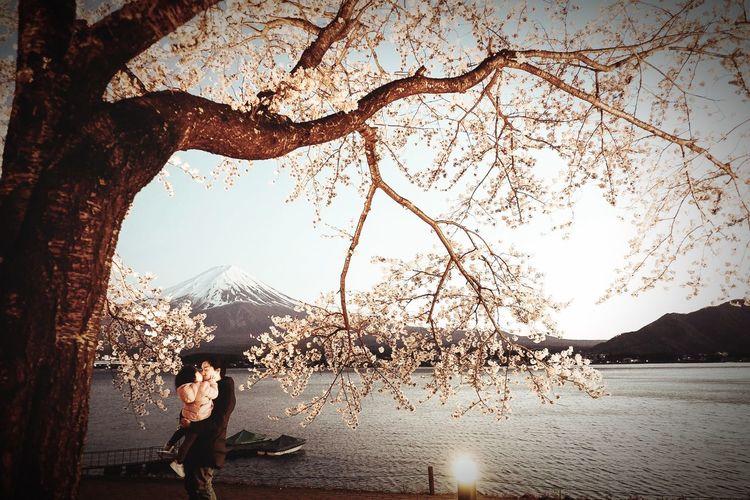 JapanInSpring Sakura Mt.Fuji PatAunya EyeEm Best Shots EyeEm Nature Lover EyeEmBestPics EyeEm Best Edits EyeEm Gallery EyeEmbestshots EyeEm Flower EyeEmBestEdits EyeEm Best Shots - Nature EyeEm Best Shots - Flowers EyeEmNewHere EyeEm Selects