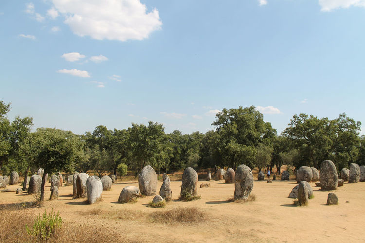 Panoramic view of stone in a morning