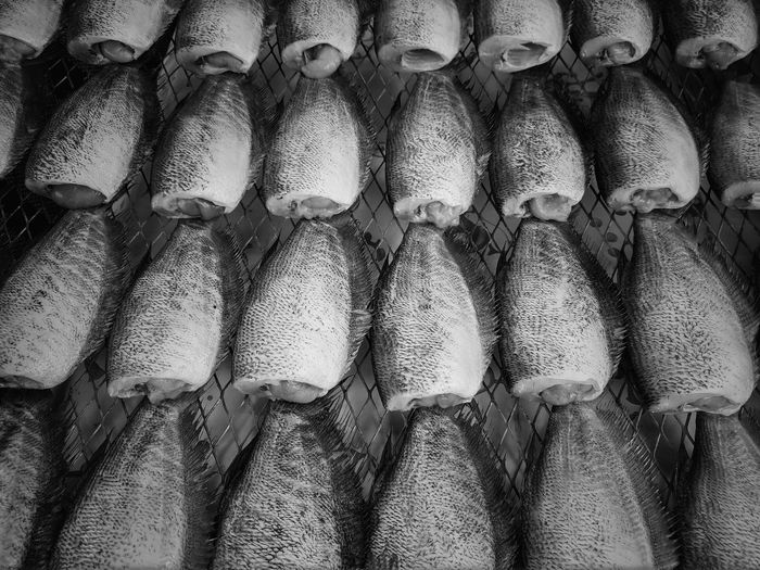 Full frame shot of fish for sale in market