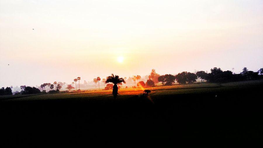 Showcase March Sun Rise Natural View Good Morning Beautiful People Vijayawada India