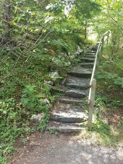 stairs into the