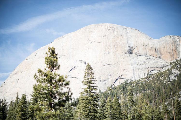 California Canyon Hiking Nature Outdoors Rocks Trees Yosemite Yosemite National Park