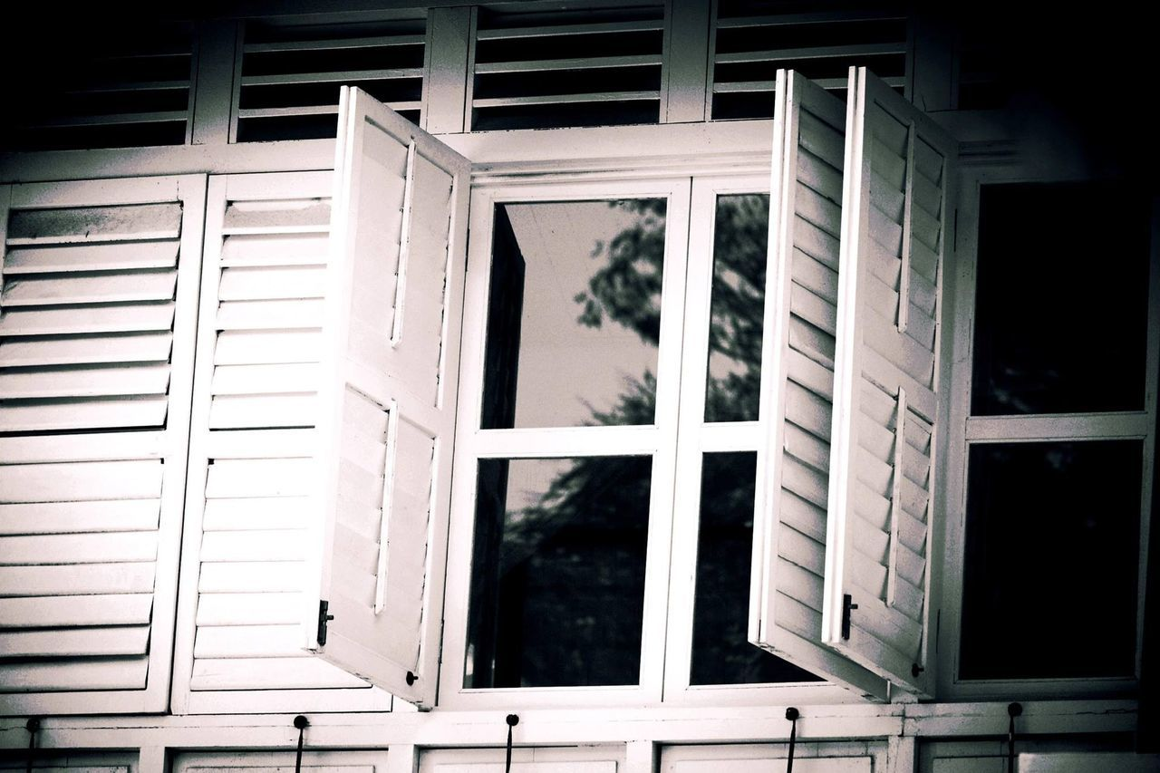 window, architecture, built structure, no people, building exterior, blinds, day, tree, indoors, close-up, security bar