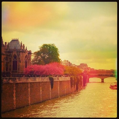 Paris France River Mullerphotoapp lovebeauty instago instahub instagood ic_cities ic_phenomenalimplusimplus_daily instamood igers insta_crew instacanvs