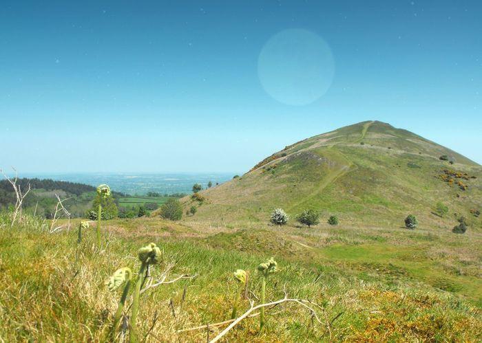 ... where our ways parted ... Landscape Wales Hills Collage Moon Fantasy Road Path Fern Bracken Vista холм холмы Тропинка коллаж луна