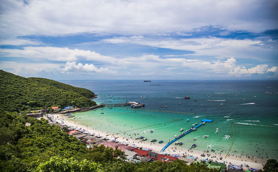 Water Tree Sea Beach Nautical Vessel Beauty Sand Blue Multi Colored Summer