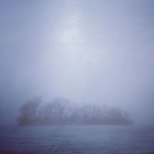 Spooky Atmosphere Spooky Trees Lake View Fog