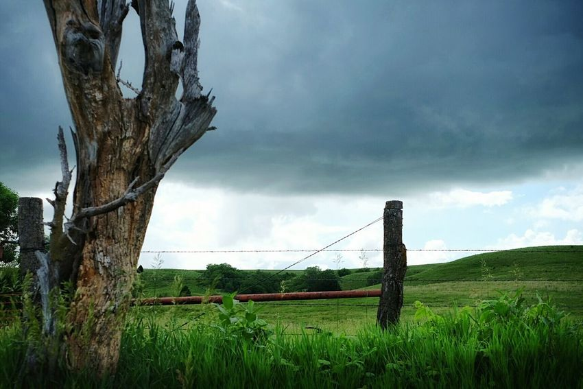 In The Middle Of Nowhere Hillcountry Rural Exploration Rural Scenes Fences Back Roads Color Photography Cloudy Day Green Nature Barbedwire