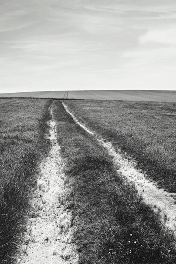 Edge Of The World lines on a field lead into nowhere (Nikon D600, 50mm primelens)