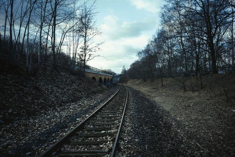 Railway tracks amidst bare trees against sky