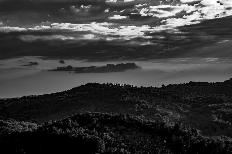 Cloud - Sky Sky Tree Beauty In Nature Plant Environment Scenics - Nature Landscape Sunset Sunset_collection Nature Silhouette Land Tranquility Mountain Forest Tranquil Scene Pinaceae Cloudscape Dramatic Sky Storm Cloud Black & White Black And White Black And White Photography Bnw_friday_eyeemchallenge