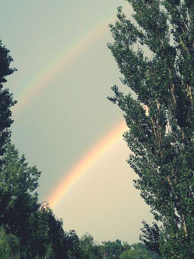 Doppelter Regenbogen Regenbogen Regenbogen ♡ Regenbogen Brücke Nature Photography Regenbogenfarbe Natur Doppelter Regenbogen Day No People